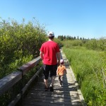 Aug5_2013_Clear_Lake_Marsh_Walk_1