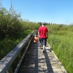 Aug5_2013_Clear_Lake_Marsh_Walk_2